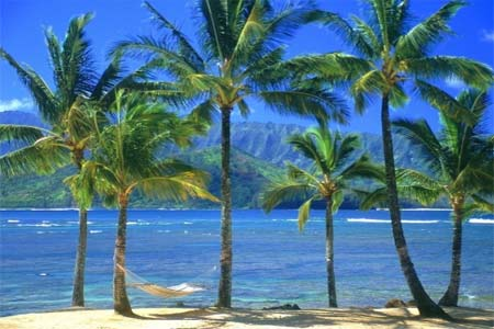 Viajar Barato al Caribe